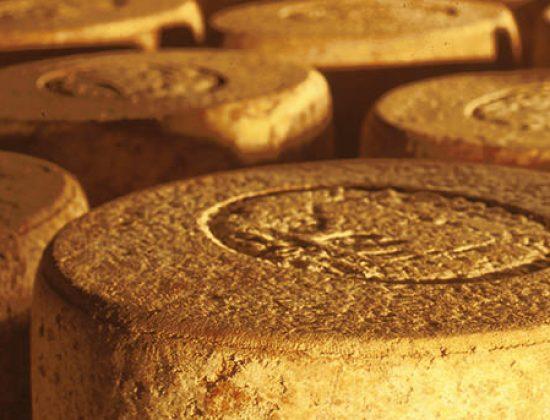 Visite de la fromagerie et dégustation gratuites